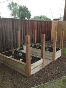 garden-during